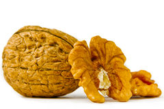 Walnuts on a white background Stock Images