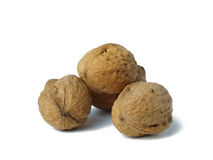 Walnuts on white background Royalty Free Stock Images