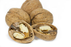 Walnuts on white background. Some Walnuts on white background Stock Image