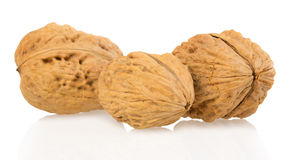 Walnuts on a white background Royalty Free Stock Photo