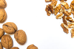 Walnuts on a white background. A walnuts on a white background Royalty Free Stock Photography
