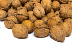 Walnuts on a white background. A walnuts on a white background Stock Images