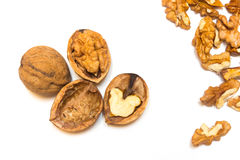 Walnuts on a white background. A walnuts on a white background Stock Photography
