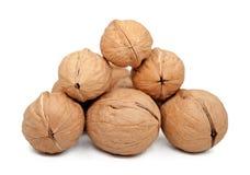Walnuts  on white. Royalty Free Stock Photos