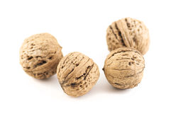 Walnuts on a white background isolated. Walnuts on a white background Royalty Free Stock Image