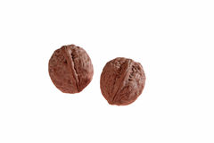 Walnuts on white background. With no shadows royalty free stock image