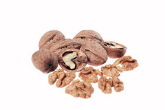 Walnuts on white background. With no shadows stock image
