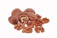 Walnuts on white background. With no shadows stock photo