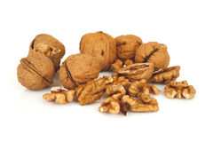 Walnuts on a white background Stock Photos