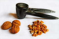 Walnuts on white background. Stock Photography
