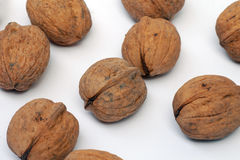 Walnuts on white background Stock Images