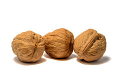 Walnuts with white background. Some walnuts with white background Royalty Free Stock Images