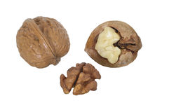Walnuts on a white background. Two walnuts, one of which it is split, on a white background Royalty Free Stock Photos