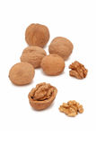 Walnuts on white background (vertical shot) Royalty Free Stock Photos