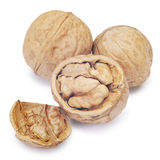 Walnuts  on the white. Clipping Path Royalty Free Stock Image