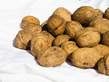 Walnuts on white fabric Stock Image