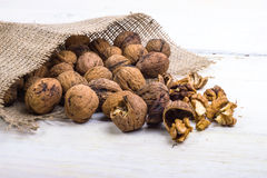 Walnuts on a white table with a bag Stock Image