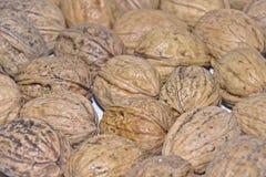 Walnuts on white table #7 Stock Photos