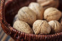 Walnuts. Whole walnuts in basket on rustic old wooden table Royalty Free Stock Photo