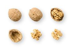 Walnuts, whole and opened, on white background. Top views of nuts and kernel halves. Seeds of the common walnut tree Juglans regia, used as snack and for Royalty Free Stock Photo
