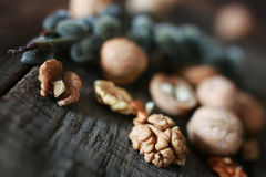 Walnuts, whole and peeled Stock Photography