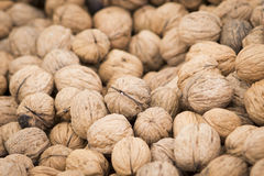 Walnuts. Whole walnuts in the shell at a spring farmer's market in San Francisco royalty free stock photos