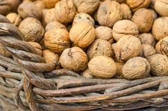 Walnuts in wicker basket Royalty Free Stock Image