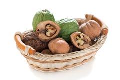 Walnuts in a wicker basket. Royalty Free Stock Photo
