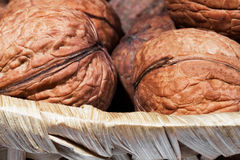Walnuts in a wicker basket on white background closeup. Walnuts in a wicker basket on a white background closeup Royalty Free Stock Photography