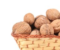 Walnuts in a wicker basket. Royalty Free Stock Images
