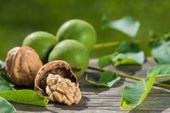 Walnuts. On a wooden background Royalty Free Stock Photography
