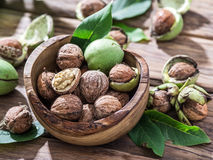 Walnuts in the wooden bowl. Royalty Free Stock Images