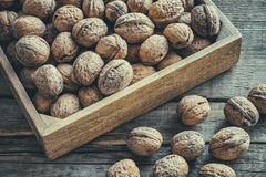 Walnuts in wooden box on table, top view. Royalty Free Stock Photo