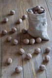 Walnuts on a wooden table. Walnuts in a cotton bag on a wooden table Royalty Free Stock Photos