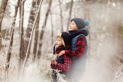 walr的两个兄弟在一起使用冬天森林的最好的朋友 库存照片