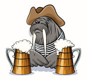Walrus and Beer Royalty Free Stock Photos