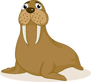Walrus cartoon Royalty Free Stock Photo