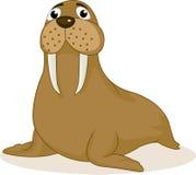 Walrus cartoon Royalty Free Stock Photo