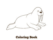 Walrus cartoon coloring book vector illustration Stock Images