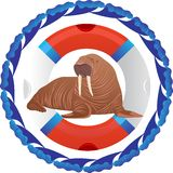Walrus and lifeline Royalty Free Stock Photos