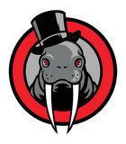 Walrus mascot Royalty Free Stock Photos