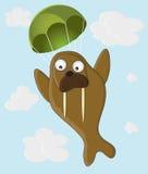 Walrus met een valscherm Stock Afbeelding