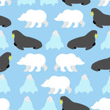 Walrus and polar bear seamless pattern. Background of Nordic Royalty Free Stock Photography