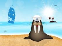 Walrus sailor Royalty Free Stock Photos