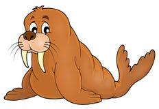 Walrus theme image 1 Stock Photo