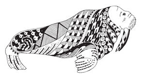 Walrus zentangle stylized, vector, illustration, freehand pencil Stock Photo