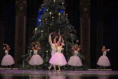 Wals van de sneeuwvlokken het het suikergoedkoninkrijk van het tweede handelings tweede gebied - de Balletnotekraker Stock Fotografie