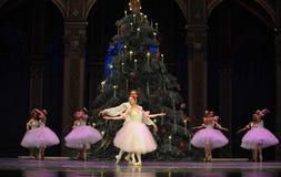 Wals van de sneeuwvlokken het het suikergoedkoninkrijk van het tweede handelings tweede gebied - de Balletnotekraker Royalty-vrije Stock Foto's
