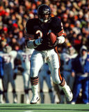 Walter Payton Chicago Bears Stock Photo