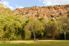 Walter Sisulu National Botanical Garden Royalty Free Stock Photo